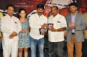 Meera Movie Audio release function photos-thumbnail-10