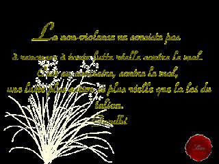http://www.w12.fr/2/citation-gandhi-bonheur.html