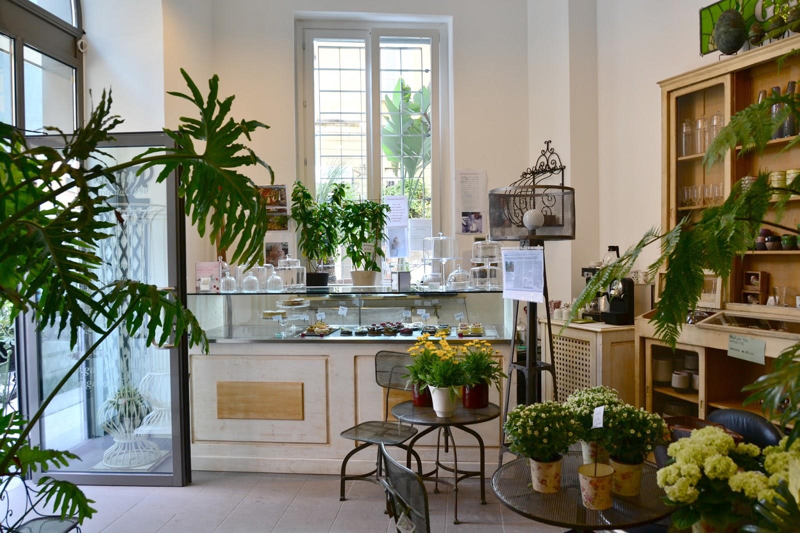 Shabby chic interiors - Gardenia pianta da giardino ...