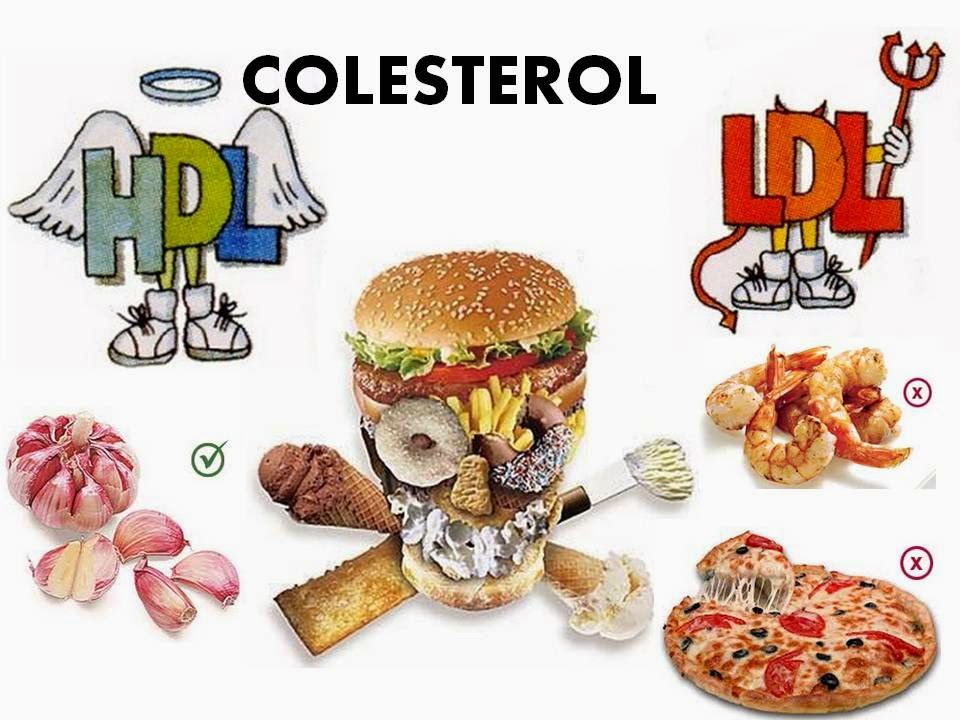 A sa de tratamento para colesterol alto - Alimentos que provocan colesterol ...