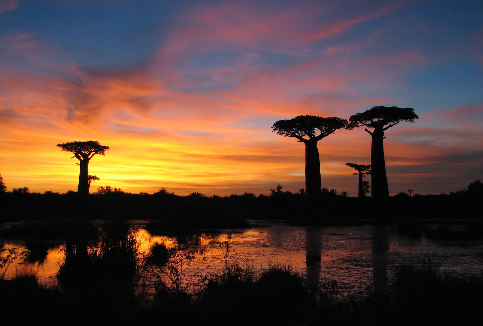 Madagascar Volo Hotel
