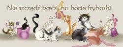 Bazarek ZMD