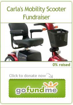 Go-Fund-Me Campaign