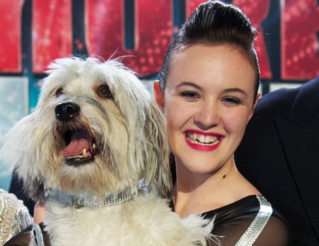 Dog That Can Talk Britain S Got Talent