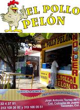 Pollo Pelón 32 4 37 91