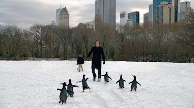 Jim Carrey in Mr. Popper's Penguins
