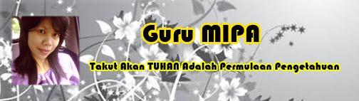GURU-mipa