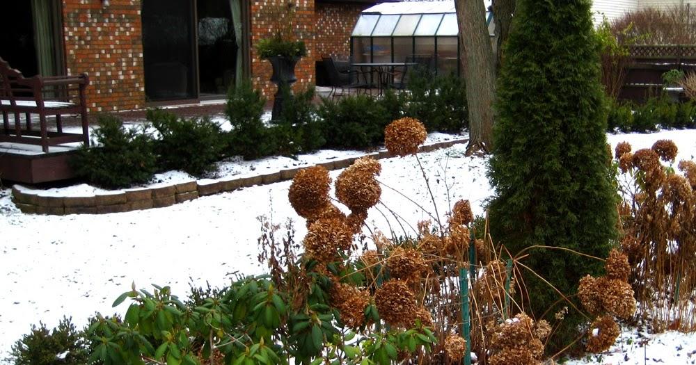Arte y jardiner a el jard n en invierno for El jardin perdido