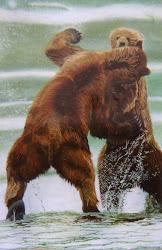 Stoeiende beren