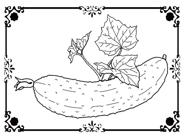cucumber coloring pages printable