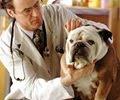 Caio Fábio ora pelo cachorrinho e ele fica curado