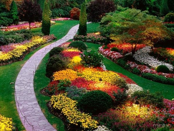 paisagem com plantas e canteiros com flores de diversas cores