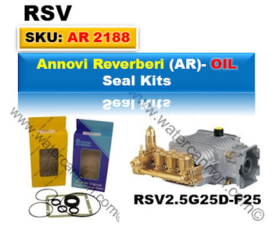 Annovi Reverberi Oil seal Kits. RSV Series.