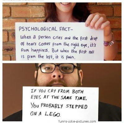 Psychological Fact Crying Photograph Lego