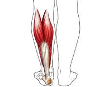 Remedii naturiste contra crampelor musculare