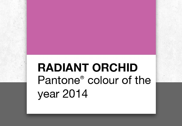 Image: How to Use Radiant Orchid in Your Home
