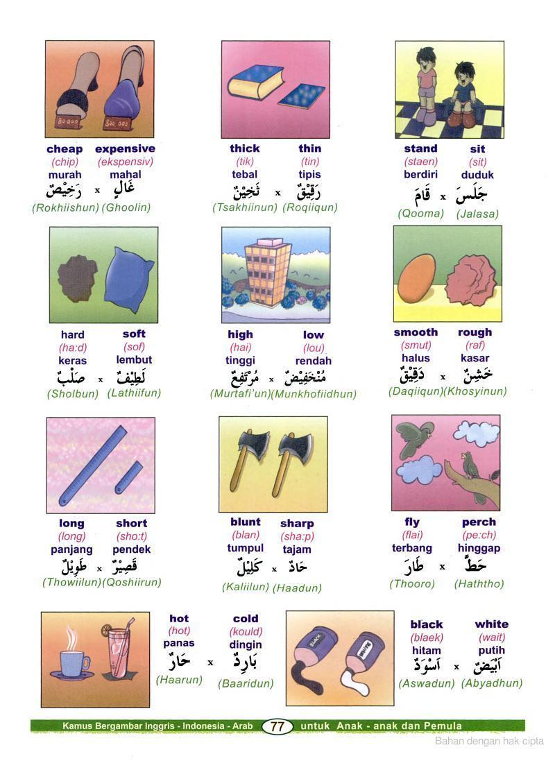 Ketikan Kamus Bahasa Arab Bergambar
