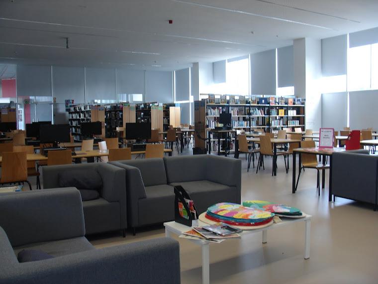 Biblioteca da Escola Básica e Secundária do Agrupamento de Escolas Fernão do Pó