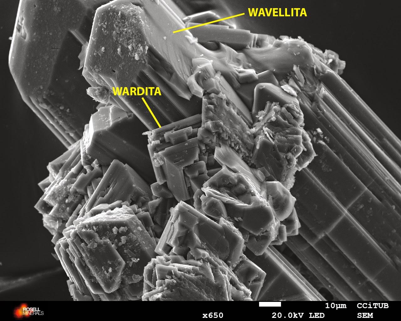 Wardite wavellite Palazuelo rosellminerals