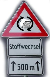 http://siebenhundertsachen.wordpress.com/2014/04/21/stoffwechsel-regeln-und-zeitplan/