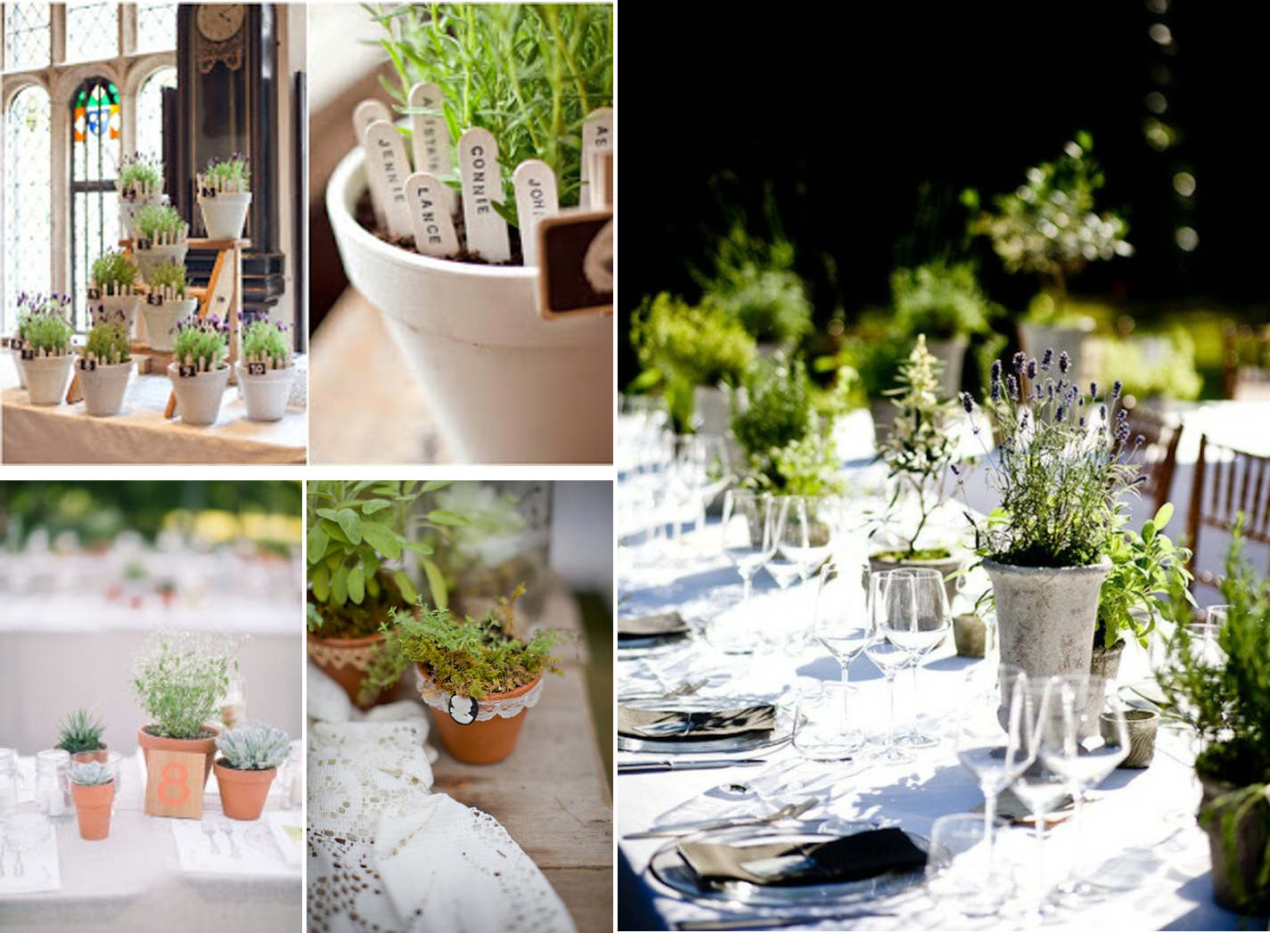 Momentips ideas para decorar tu boda con plantas arom ticas for Todo ideas originales para decorar