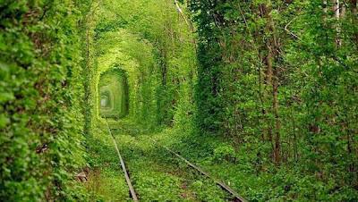 tuneles mas bellos del mundo