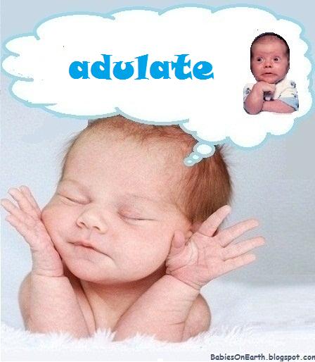 adulate