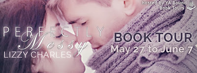 http://yaboundbooktours.blogspot.com/2014/03/blog-tour-sign-up-perfectly-messy-by.html