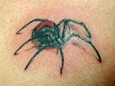 spider tattoo design
