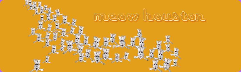 Meow-Houston