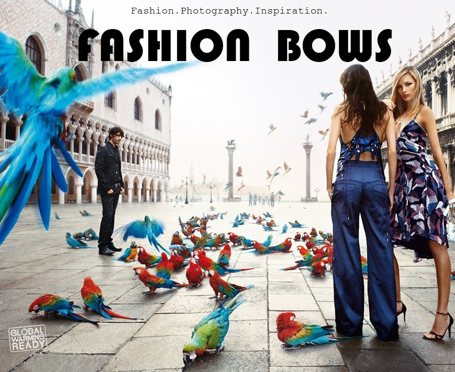 Fashion Bows