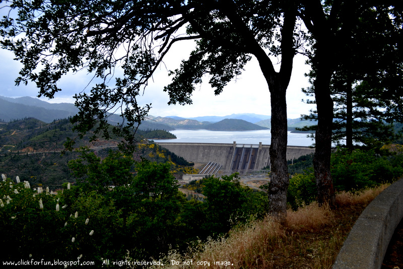 Shasta Dam Lake Redding California Trips Travels Places To See Weekend Getaways