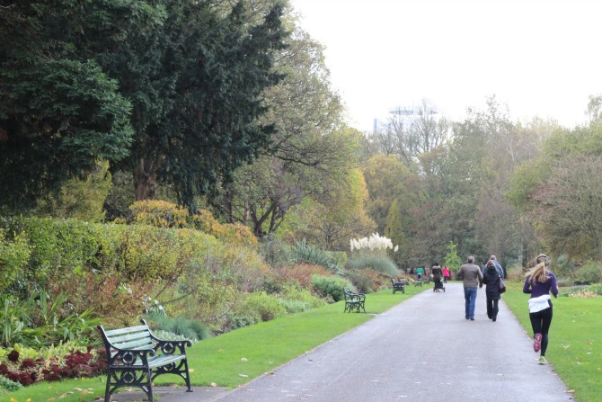 Path in bute park