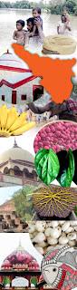 मैथिली चेतना संचार करू