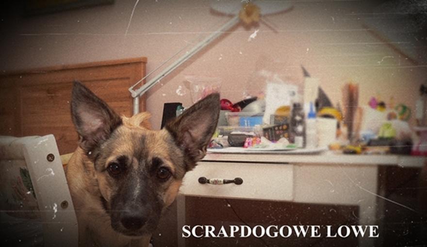 Scrapdogowe lowe