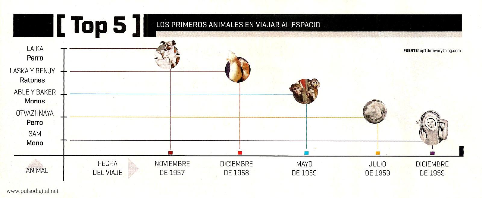 ¿Cuáles fueron los primeros animales en viajar al espacio?