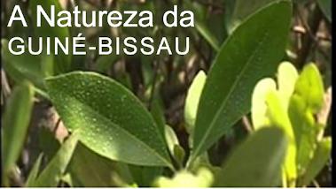 A NATUREZA DA GUINÉ-BISSAU