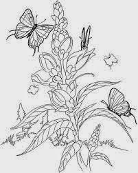 Mewarnai gambar bunga dan kupu-kupu untuk anak 14