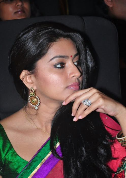 sneha spicy saree inages_unseen latest photos