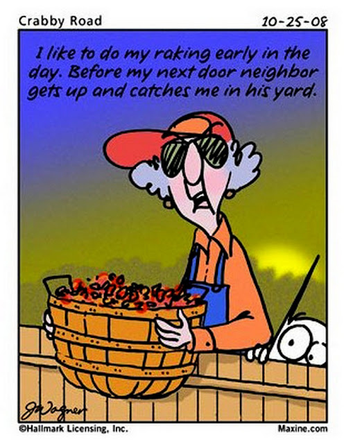 Funny maxine cartoons for 2013   just b.CAUSE