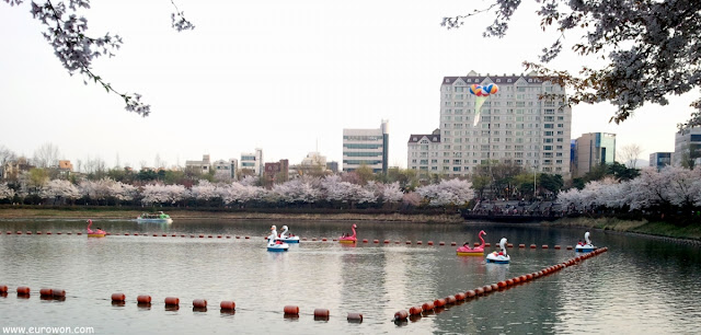 Botes con forma de pato en el lago de Lotte World
