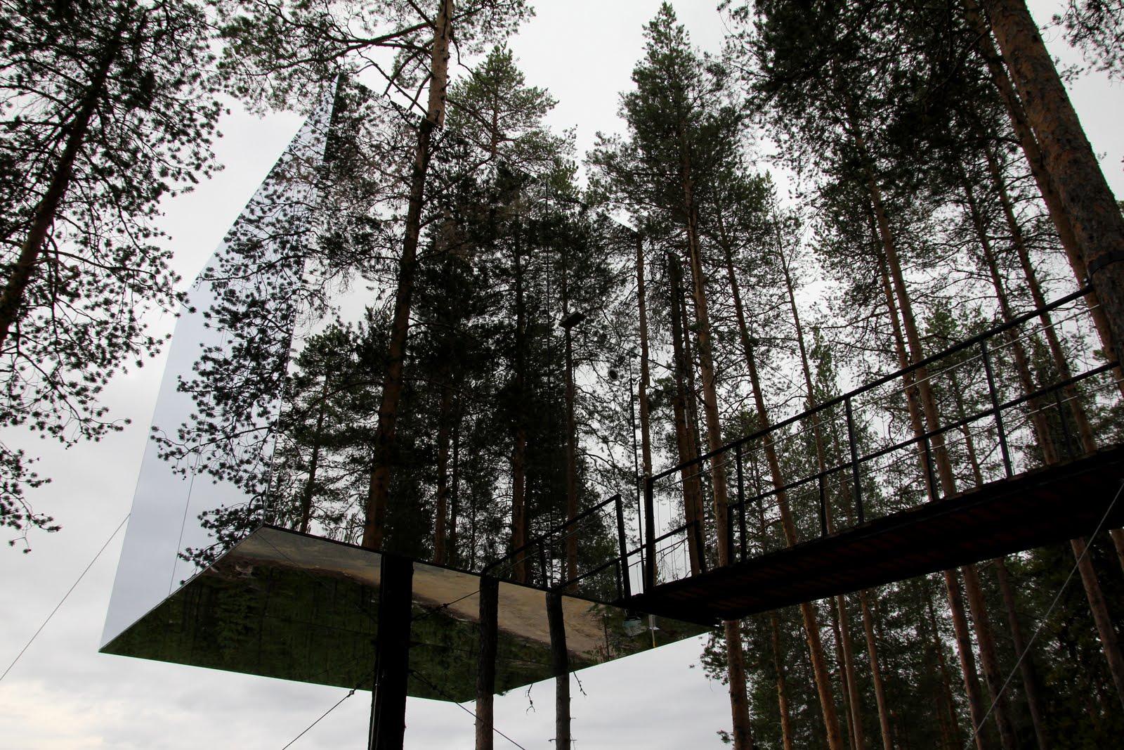 Enigmas de la siensia noticias el hotel sueco que - Alojamientos en el bosque ...