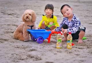 copii la joaca