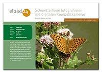 Schmetterlinge fotografieren