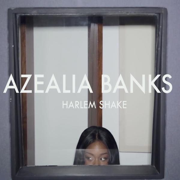 Azealia Banks - Harlem Shake (Remix) Lyrics | MetroLyrics