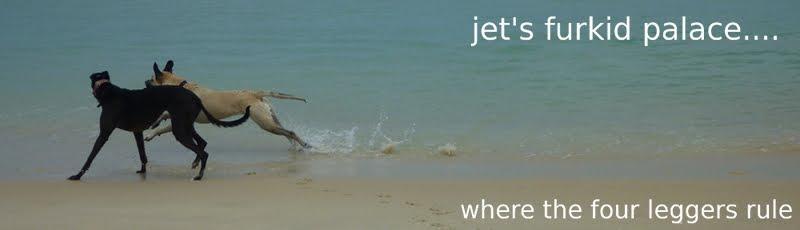Jet's Furkid Palace