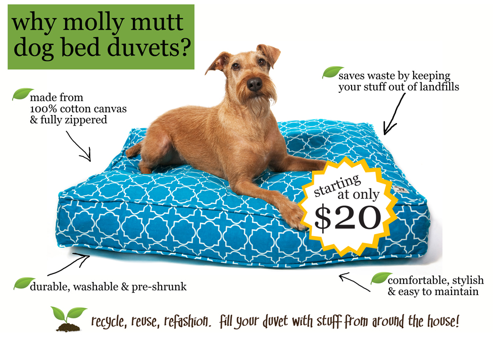 pet beds that add style to your home's decor   drivendecor