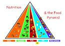 Nutriion Pyramid