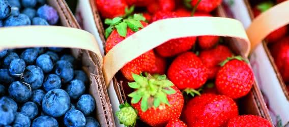 Alimentos ricos en antioxidantes alimentos antioxidantes - Antioxidantes alimentos ricos ...