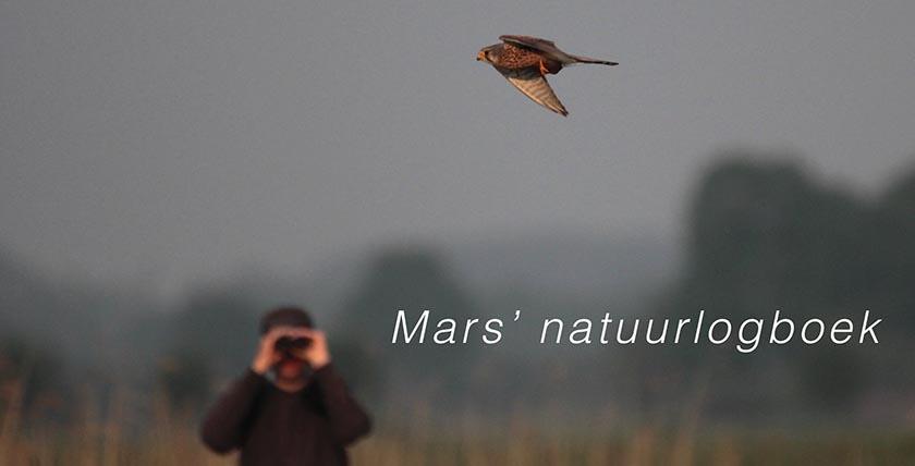 Mars' natuurlogboek